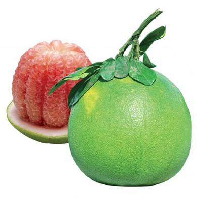 Green skin pomelo grapefruit0